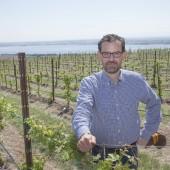 Andrew Browne in vineyard
