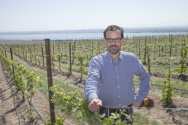 Andrew Browne in vineyard